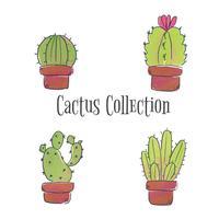 Cute Cactus Set Coleção vetor