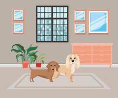 cachorrinhos fofos na sala de casa