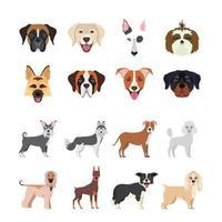 pacote de grupo de raças de cães vetor