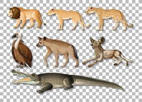conjunto de animais selvagens africanos isolados vetor