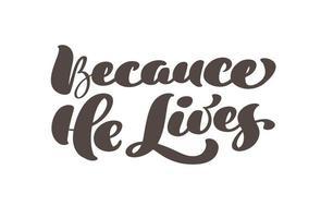 mão desenhada porque ele vive o texto de vetor de letras de caligrafia de Páscoa. cartão de saudação da ilustração de Cristo Jesus. frase tipográfica citação feita à mão em fundo branco isolado