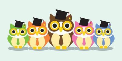 grupo de formatura de coruja vetor