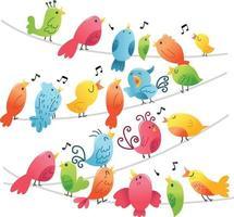 pássaros super fofos em fios vetor