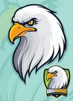 cabeça de águia careca americana para mascote e design de logotipo vetor