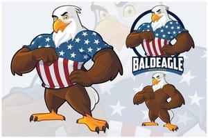 conjunto de desenho de mascote de águia vetor