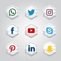 Coleção de mídia social hexagonal vetor