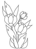 buquê de flores lindas da primavera com folhas com gotas de orvalho. desenho vetorial. linha preta, contorno em um fundo branco. planta de tulipa para impressão, decoração e design
