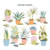 coleção de plantas caseiras vetor