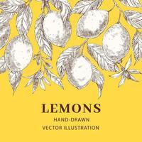 modelo de cartaz de vetor de esboço desenhado de mão de limões