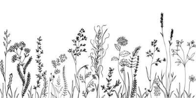 esboçar ervas daninhas, ervas, flores e cereais. design de elementos de tendência.
