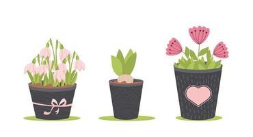 flores da primavera em vasos, isoladas no fundo branco, ilustração vetorial vetor