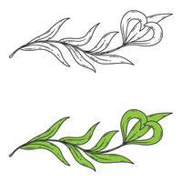 elemento floral para o logotipo.