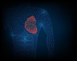 O estabilizador da anatomia do coração humano gera uma rede de linhas e triângulos, pontos de conexão na ilustração de fundo azul vetor