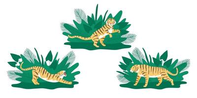 definido com poses de tigre vetor