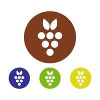 conjunto de uvas no fundo branco vetor