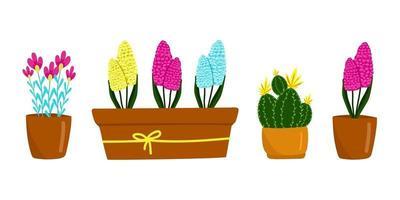 conjunto de diferentes flores e plantas domésticas, cactos, jacintos e outros, lindas flores da primavera em vasos marrons, presente para o dia da mulher, ilustração vetorial no estilo cartoon, plana, sorteio de mão.