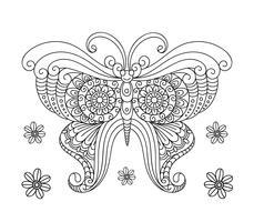 Livro de colorir de borboleta para adulto vetor
