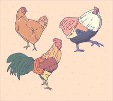 galinha definir o estilo do doodle. estilo de desenho de imaginação