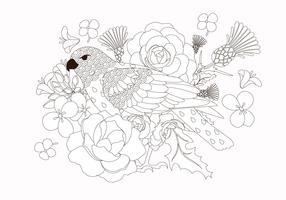 Vetor De Animal De Pássaro Livro De Colorir