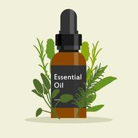 Venda de óleos essenciais vetor