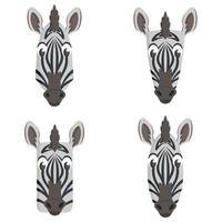 conjunto de zebras de desenhos animados.