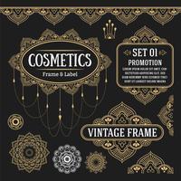 Conjunto de elementos de design gráfico vintage retrô para frame, rótulos, vetor