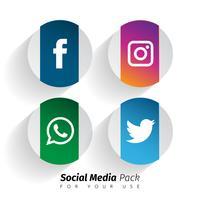 ícones de mídia social popular vetor