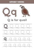 rastreando o alfabeto inglês. letra q é para codorna. vetor