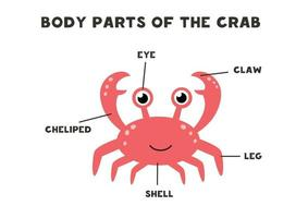 partes do corpo do caranguejo. esquema para crianças. vetor