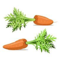 deliciosas cenouras cruas com folhas