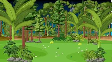 cena da paisagem da floresta à noite vetor