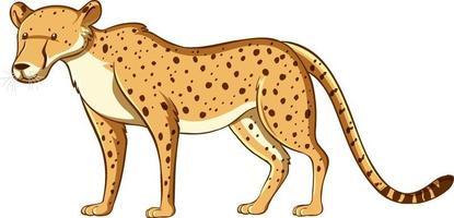 estilo desenho animado de leopardo isolado no fundo branco vetor