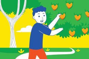 jovem colhe frutas no jardim. vetor