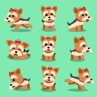 conjunto de poses de cachorro yorkshire terrier personagem de desenho animado vetor