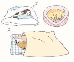cães e gatos dormem em poses engraçadas. vetor