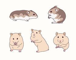 ilustração de hamster fofo vetor