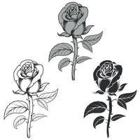 desenho vetorial de flores em três estilos diferentes, preto e branco vetor