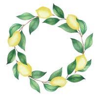 coroa de flores em aquarela de limões e ramos verdes, folhas vetor