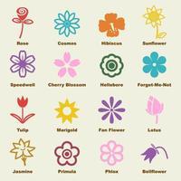 elementos do vetor de flores