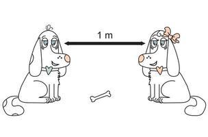 cachorros fofos mantendo distância social vetor