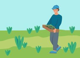 agricultor carrega uma caixa de mudas