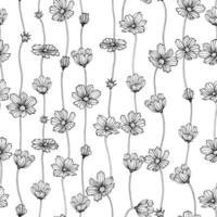 flores botânicas florais cosmos sem emenda. primavera selvagem isolada. arte em tinta preta e branca gravada. padrão de fundo sem emenda. design de elementos para tecido e papel de embrulho.