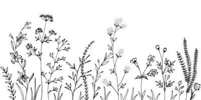 silhuetas negras de grama, flores e ervas. vetor