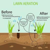 jardinagem de relvados, serviços de paisagismo. gramado verde no solo no contexto dos benefícios da aeração de uma ferramenta de tubo oco em comparação com o método convencional. vetor