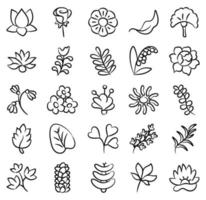 elementos de flor de flor vetor