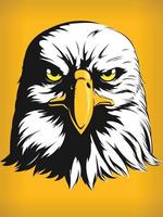 águia falcão cabeça de falcão, vista frontal dos desenhos animados, desenho de clipart vetorial vetor