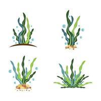 ilustração de imagens do logotipo de algas marinhas vetor