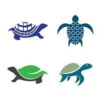ilustração das imagens do logotipo da tartaruga vetor