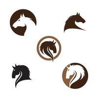 ilustração das imagens do logotipo do cavalo vetor