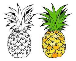 ilustração do vetor de frutas abacaxi. objeto isolado no fundo branco. estilo do doodle. design de pano.